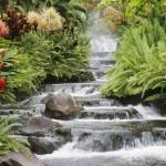 Valley Center Chiropractor | Valley Center chiropractic My Alternative Medicine Approach |  CA |