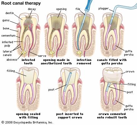 Family Dental in San Francisco CA