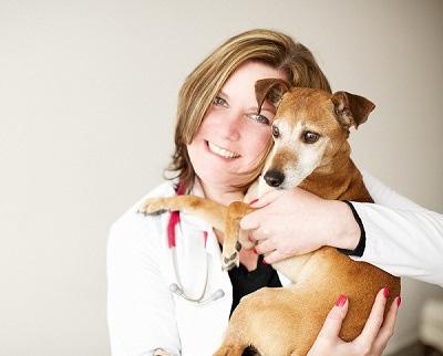 Arlington, VA Veterinary   Adrienne Hergen, DVM and Dana Carr, DVM