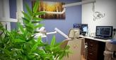 Stratford Dentist   Treatment Room   Barnum Dental