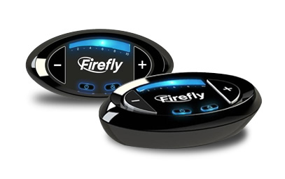 firefly_pic.jpg