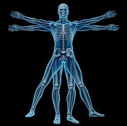 X-ray for chiropractic exam