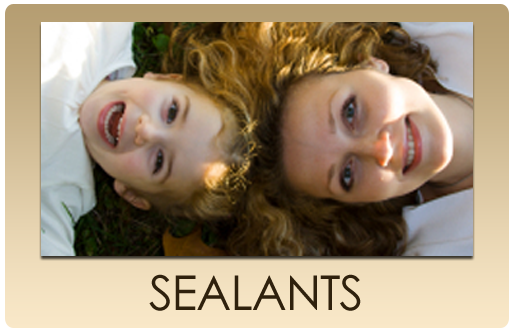 serv_but_SEALANTS.png