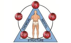 Weston Chiropractor | Weston chiropractic Applied Kinesiology |  FL |