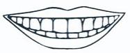 Yorktown Dentist   J. Michael Coleman, DDS