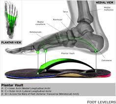 custom_foot_orthotics1.JPG