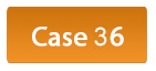 case-35-button.png