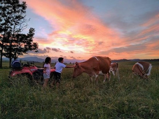 Rural Retreat My Shepherd's Farm | My Shepherd's Farm in Rural Retreat | VA | Lynda Bracken