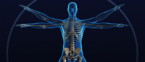icon_chiropractic.png