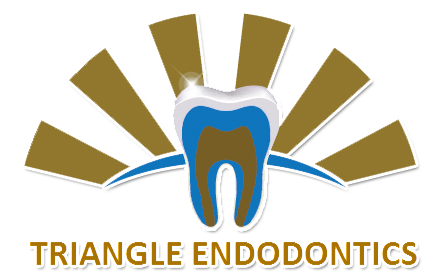 triangle_endo_png.png