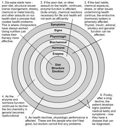 holistic_health_circles.jpg