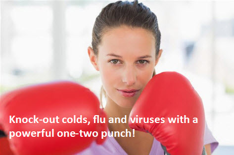 Elk River Chiropractor   Elk River chiropractic One-Two Punch for Your Immune System    MN  