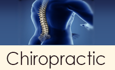Leonardo Chiropractor | Chiropractor Leonardo NJ | Middletown, NJ | Atlantic Highlands, NJ | Motor Vehicle Accident