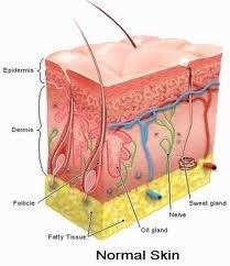 Baton Rouge Podiatrist | Baton Rouge Growth Factor Treatment | LA | Foot And Ankle Institute |