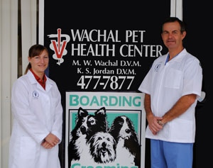 Lincoln veterinarian, vet in Lincoln,  NE Dogs, Cats, Animal Doctor, Vaccinations