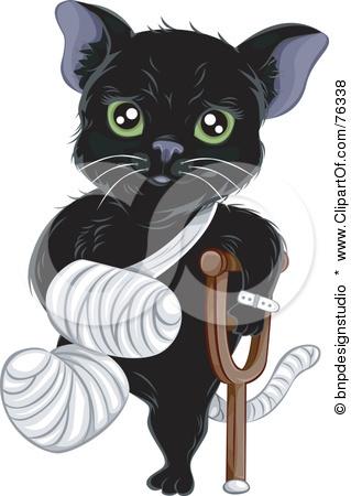 Moultonboro Veterinary | Moultonboro Testimonials  | NH | <p>Meadow Pond Animal Hospital, LLC</p> |