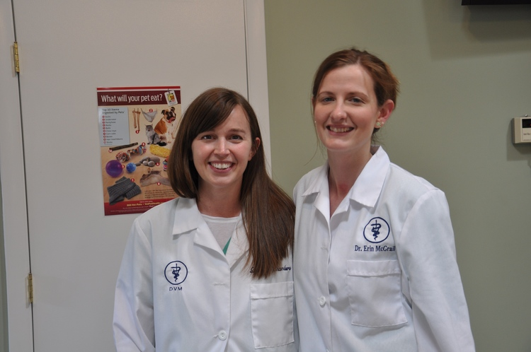 Moultonboro Veterinary   Moultonboro Current News   NH   <p>Meadow Pond Animal Hospital, LLC</p>  