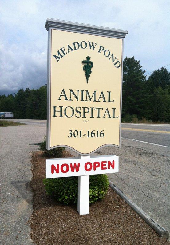 Moultonboro Veterinary | Moultonboro Current News | NH | <p>Meadow Pond Animal Hospital, LLC</p> |
