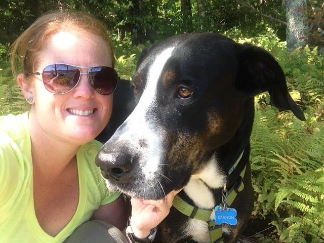 Moultonboro Veterinary | Moultonboro Doctors | NH | <p>Meadow Pond Animal Hospital, LLC</p> |
