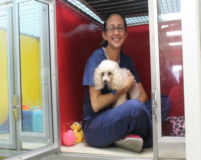 Miami Veterinary | Miami Our Vacation Guests | FL | <p>Trail Animal Hospital</p> |