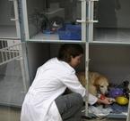 Dr. Lista checks a patient