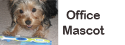 but_office_mascot.png