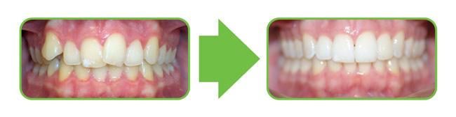 <p>Locust Valley Family Dental</p> in Locust Valley NY