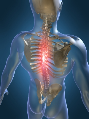 back_ache_chiropractor.jpg