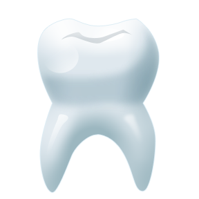 tooth__1_.png