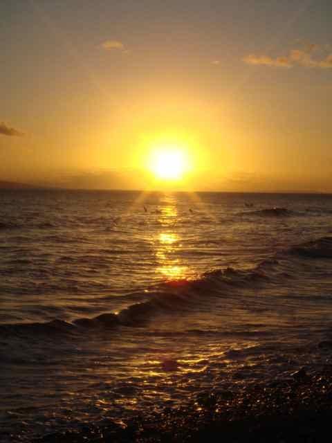 sunset_waters.jpg