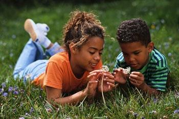 Oak Park Chiropractor | Oak Park chiropractic Kids & Chiropractic |  MI |