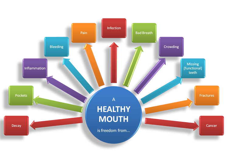 healthy_mouth_chart.png