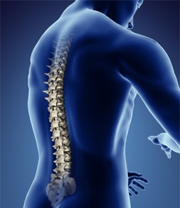 Needham Chiropractor | Chiropractor in Needham