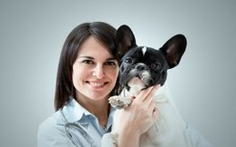 Dallas Veterinary   Dallas Senior Pet Wellness   NC   Crossroads Animal Hospital  