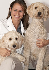 Dallas Veterinary | Dallas Ultrasound | NC | Crossroads Animal Hospital |