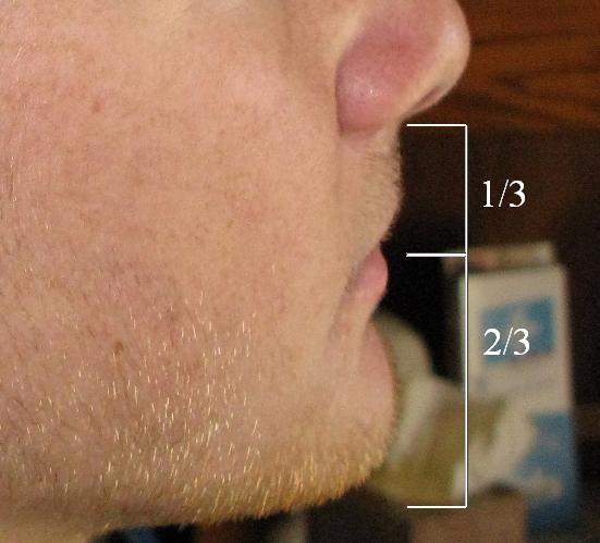 Facial_Ratios_2.JPG