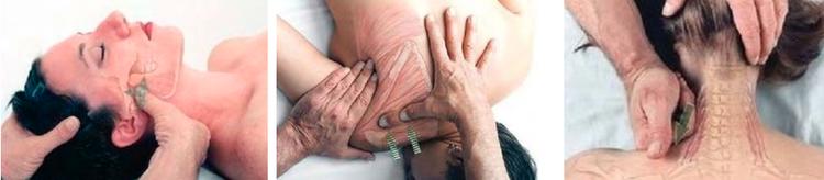 Holland, MI Chiropractor | Holland, MI chiropractic Massage Therapy |  MI |