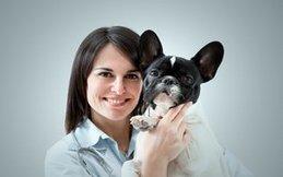 Hillsborough Veterinary   Hillsborough Geriatric Wellness   NC   HomeVet Mobile Veterinary Care  