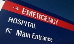 Hillsborough Veterinary | Hillsborough Emergency Medical Care | NC | HomeVet Mobile Veterinary Care |