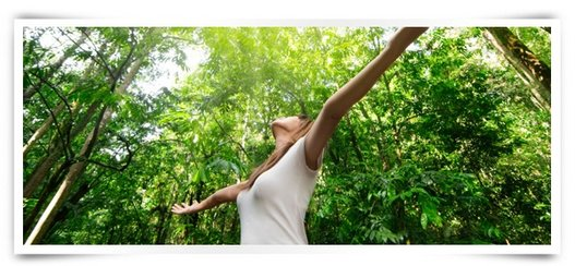 Pearland Chiropractor   Chiropractor in Pearland