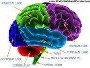 Natick Chiropractor | Natick chiropractic Cornerstones of Health |  MA |