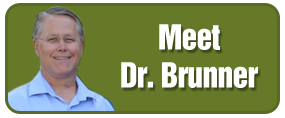 Meet Dr. Brunner