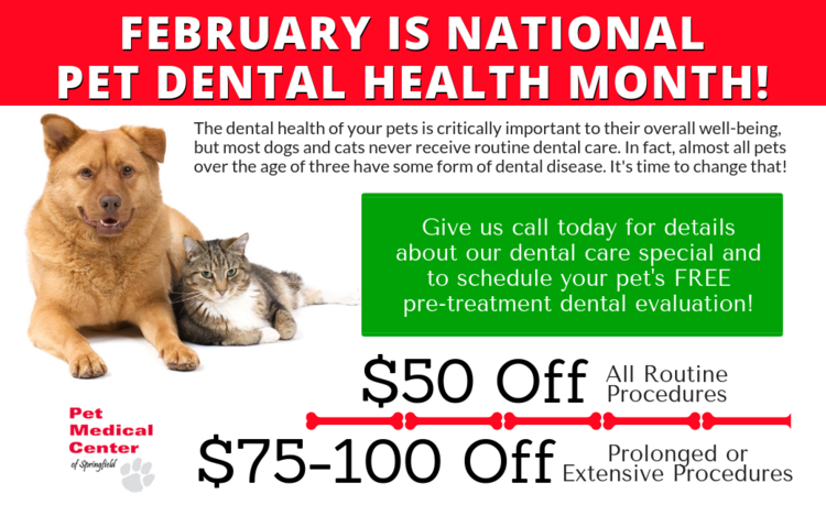 Springfield Veterinary | Springfield Welcome | VA | Pet Medical Center of Springfield |