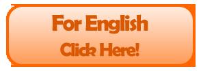 Abrir nuestro Sitio Web en Inglés