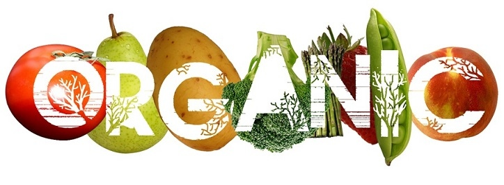 San Juan Chiropractor | San Juan chiropractic Organic Food |  PR |
