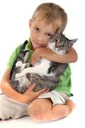 Huntington Beach Veterinary | Huntington Beach Pet Gallery | CA | Adams Pet Clinic |